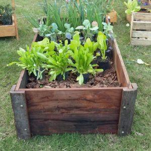 Huerta Organica De Quebracho Mundo Garden