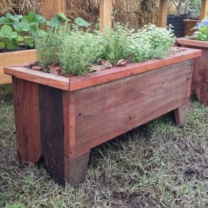 Huerta Jardinera Mundo Garden