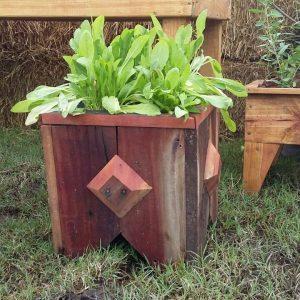 Muelita Porta MAceta Quebracho Mundo Garden Huerta Urbana Organica